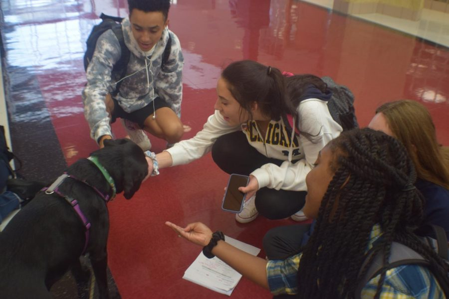 Juniors Bryce Girves and Emma Cantu get to know North's newest staff member, Chloe.