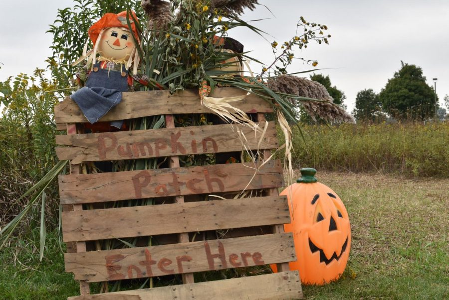 A+scarecrow+sits+atop+a+sign+welcoming+guests+into+the+corn+maze%0A