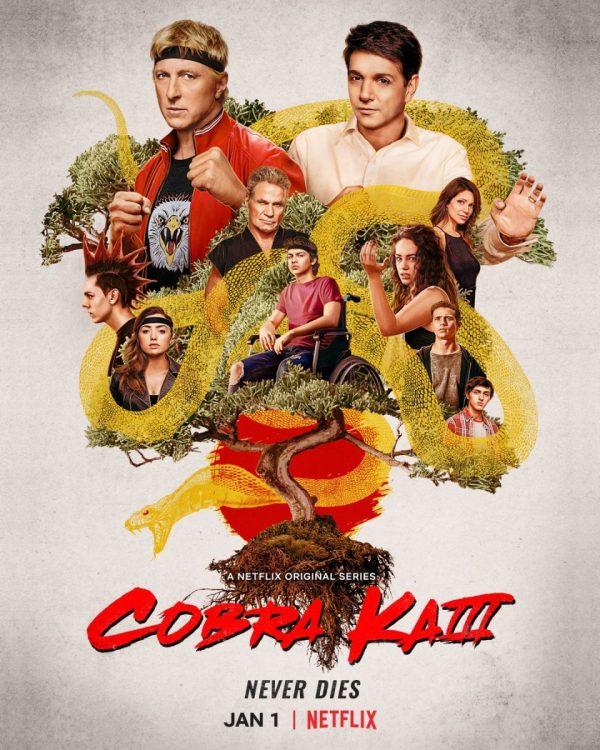 Cobra Kai strikes back with third season