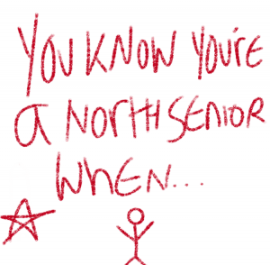 Senior Survey responses