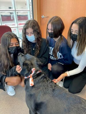 Freshmen Sue Ellen Damato, Lauren Dwyer, Izzy Alletto and Niah Trujillo get up close and personal with Chloe. Photo by Nicole Posont